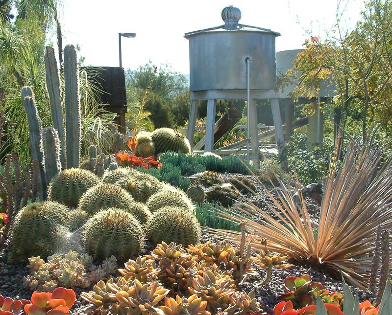 Exhibits the water conservation garden the water for Water saving garden designs