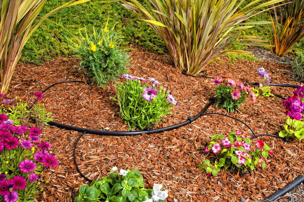 Garden landscaping and irrigation