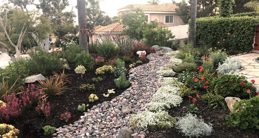 WaterSmart Landscape Winners Announced!